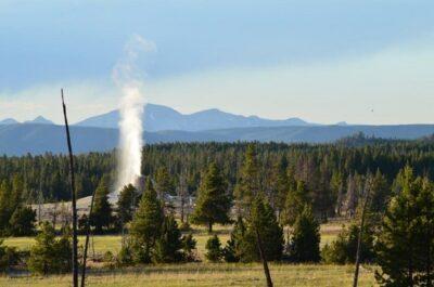 7 překvapivých věcí ze života v Yellowstonu