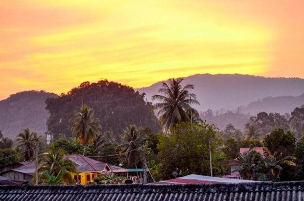 Malajsie: dobrovolníkem v deštném pralese 1