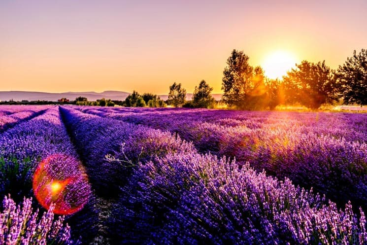 Provence Itinerary: Best of Provence in 3 days
